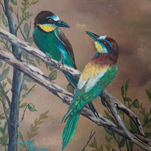 CR 01 Bee-Eaters