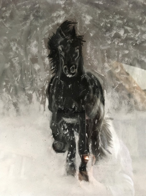 JBOA Black Horse white Snow