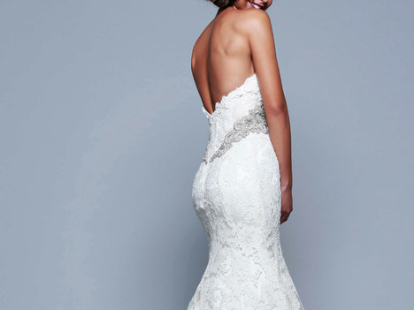 'Pure Michigan' is the new look for bridal gowns, veils