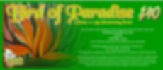 Bird of Paradise Banner.png