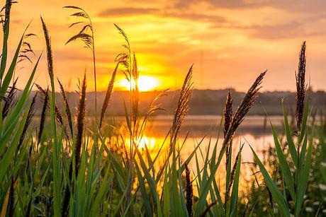sunrise-1670979_1920.jpg