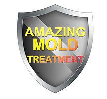 Fusion Decon-mold-treatment