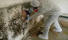 Mold-Removal-Remediation-Sacramento-Roseville