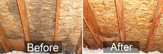 Fusion Decon Before and After Attic Mold Removal
