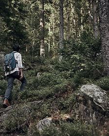 Homem, hiking, em, selva