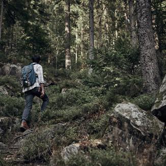Mann, der in der Wildnis wandert