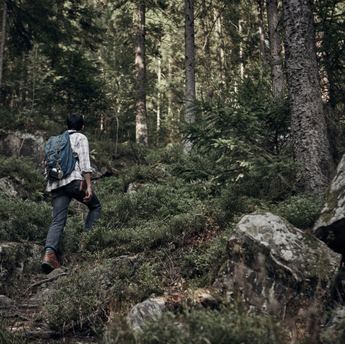 Responsible Travel Tips: Code Green for Hikers