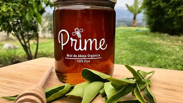 Miel de abeja orgánica Prime