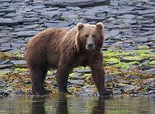 Alaska_2016.jpg
