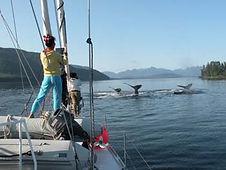 Alaska_2012.jpg