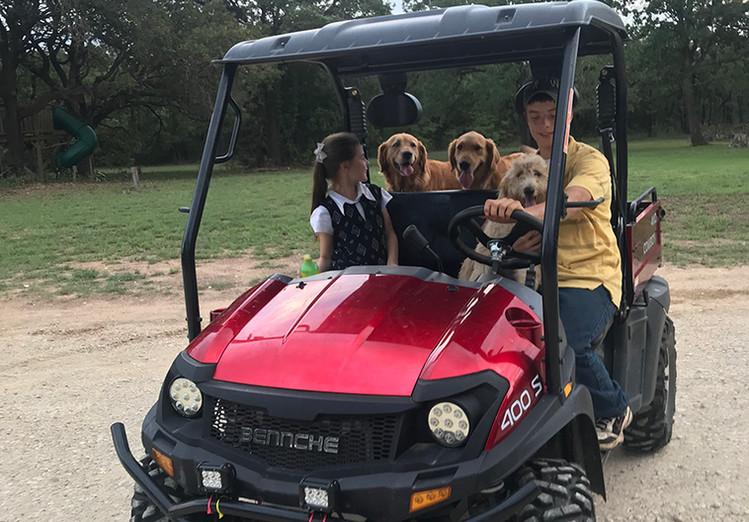 Our dogs love to ride