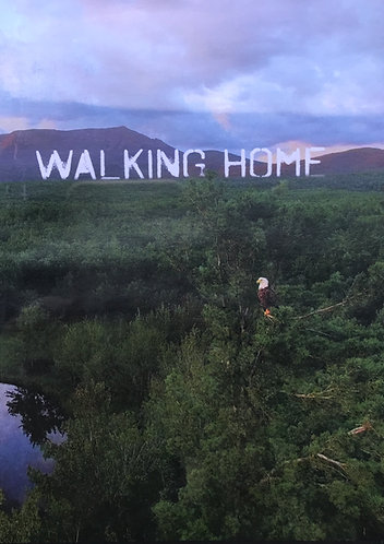 DVD - Walking Home