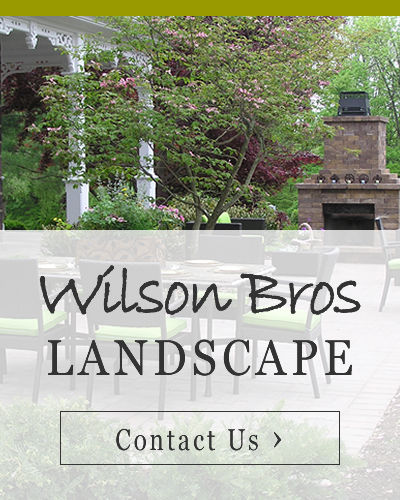 Wilson-Bros-Landscape-Banner.jpg