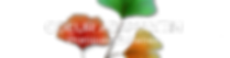 Ginko coeur admantin logo-titre1.png