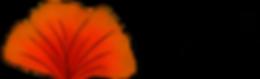 Ginko coeur admantin dupliquer ROUGE3.pn