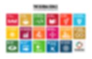 The Global Goals grid