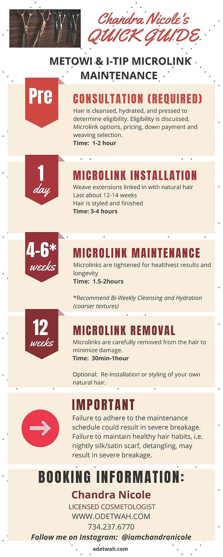 Microlink Maintenance Schedule - Infogra