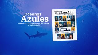 Océanos Azules - Prácticas Legales con Alto Potencial de Crecimiento