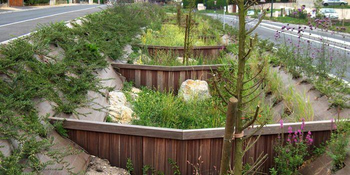 Guia de gestion agua lluvia
