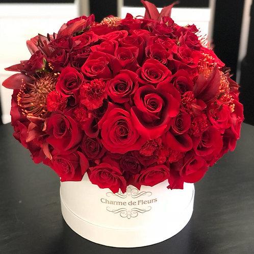 Suculento Mix Roses