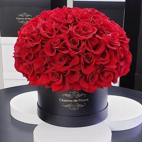 Suculent Red Roses