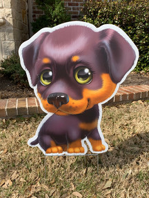 Brown Pup