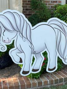 SHY WHITE HORSE