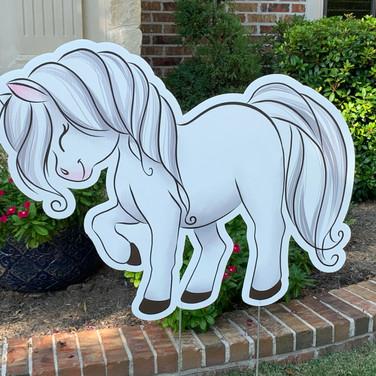 SHY WHITE HORSEY.JPEG