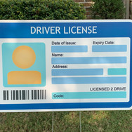 LARGE DRIVER'S LICENSE
