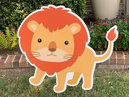 BABY LION.JPEG