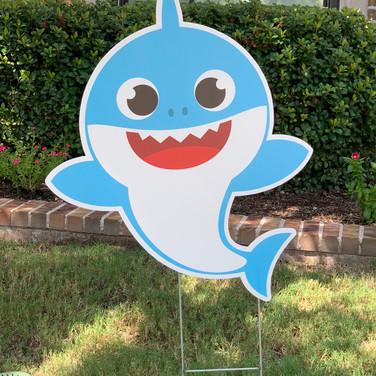 BABY BLUE SHARK 2