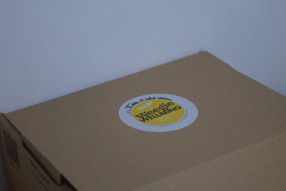 box lid.JPG