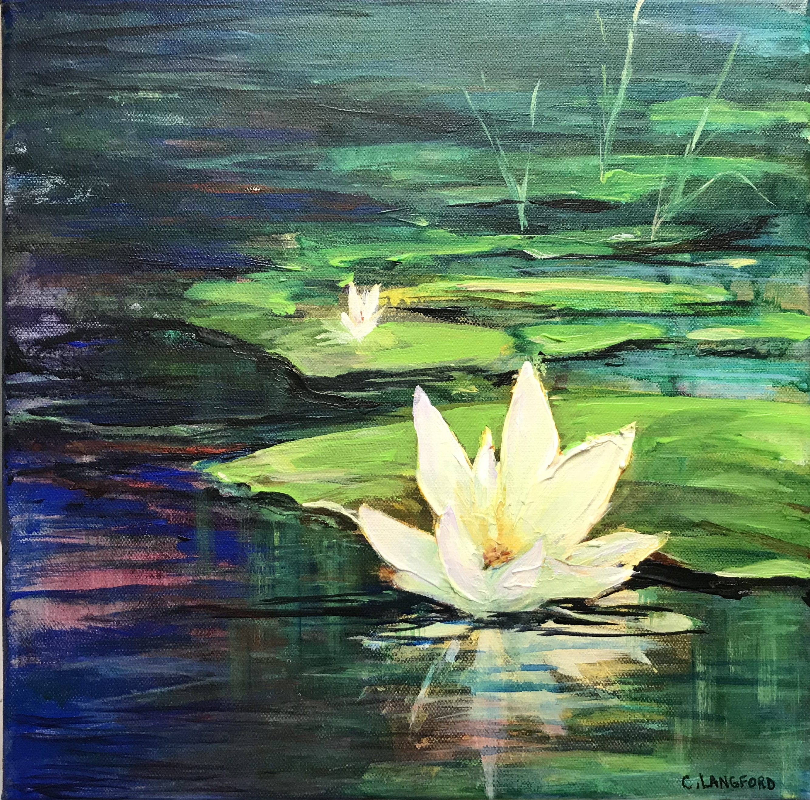 12x12 Lily Reflection $225