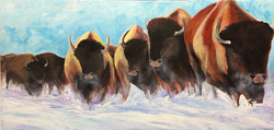 18x36 Return of the Bison $750