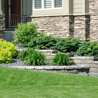 Landscaping and Wall