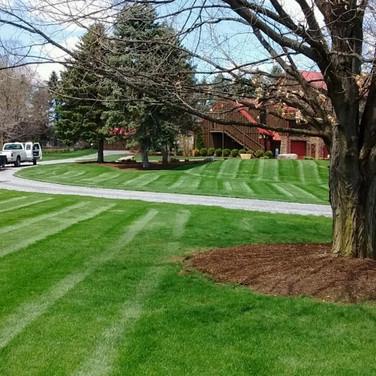 Lawn Maintenance, Mowing