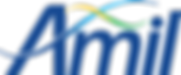 amil-logo-1-696x288.png