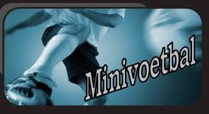 Minivoetbal Zomertornooi : Pauwels Cup EEG - 19-20/06/2015