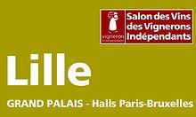 LILLE_GdPalais_1.jpg