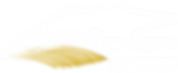 LOGO Blanc fond transparent-DOMAINE-LAPO