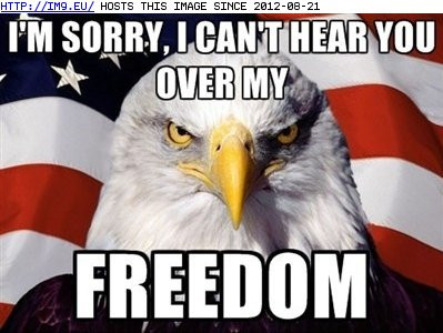 4th-of-July-Funny-Quotes-2 (2).jpg