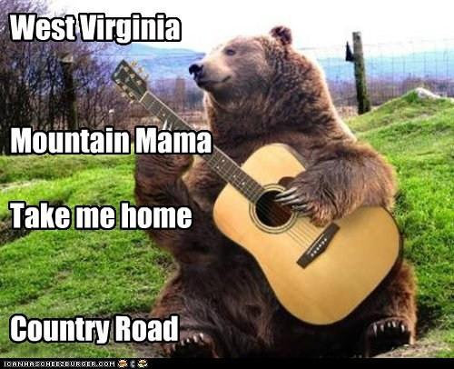WV bear.jpg