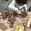 Thumbnail: Beginner At-Home Clay Kits