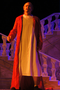 Cardinal Richelieu Robe