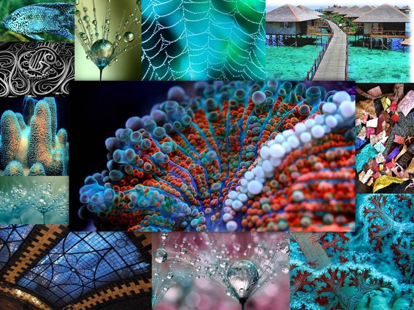 Dew Fairy Concept Collage