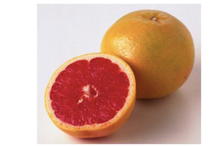 Grapefruit, Red