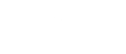 8. BusinessesBay Logo copy.png