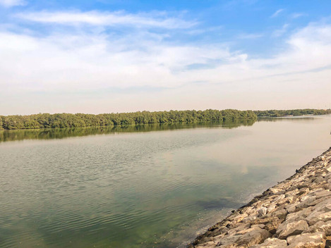 BEST KAYAKING PLACES IN ABU DHABI