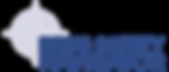 DSN logo_02212018.png