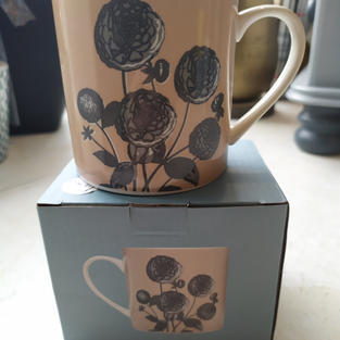 RHS  Mug